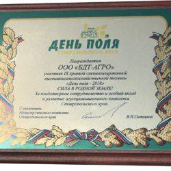 Диплом-День-Ставропольского-края-2018