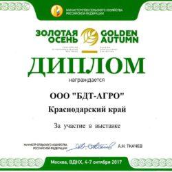 Диплом-Золотая-Осень-2017